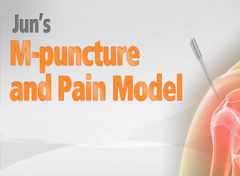 Jun`s M-puncture And Pain Model